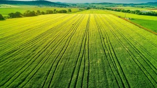 bigstock-Aerial-View-Over-The-Agricultu-239322334