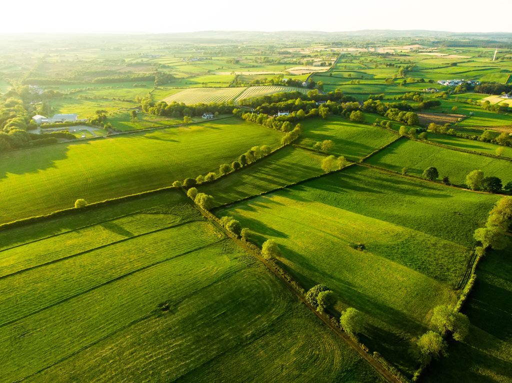 bigstock-Aerial-View-Of-Endless-Lush-Pa-291714451