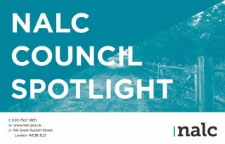 council-spotlight-cover-image-low